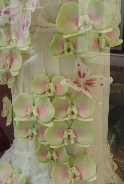 Chocolate.cake.tropical.flowers