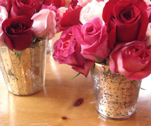 Rachel roses_5