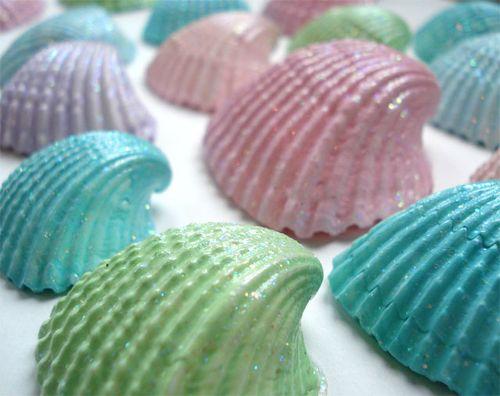 Seashells_blog_4