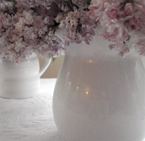 Lilacs_blog_7