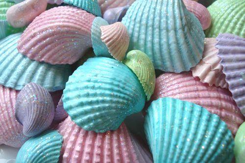Seashells_blog_1