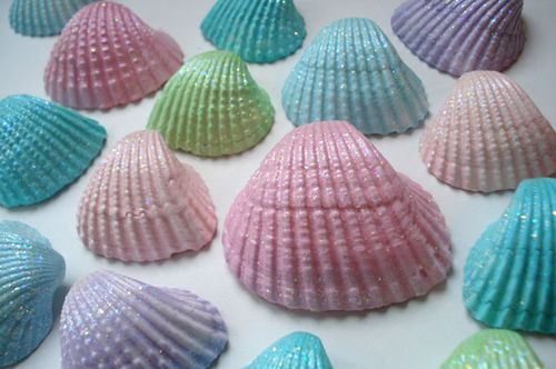 Seashells_blog_2