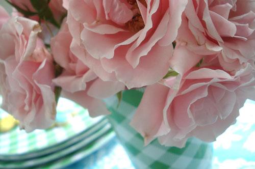 Green plates_blog_1