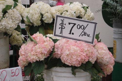Such pretty things los angeles flower market la flower marketblog10 mightylinksfo