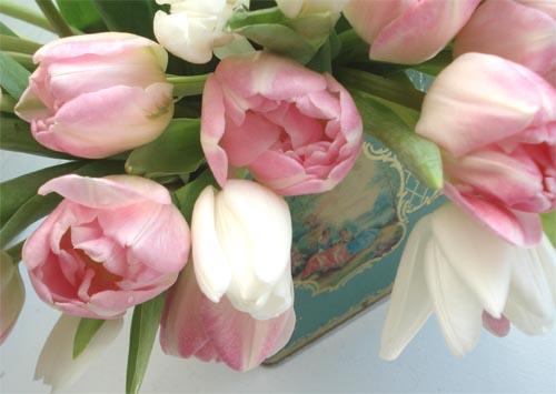 Tin flowers_6