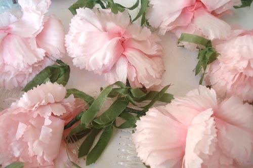Carnations-large