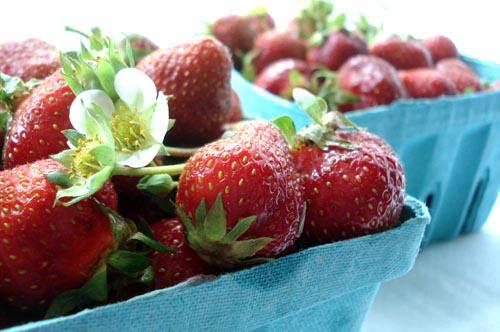 Strawberry shortcake_1