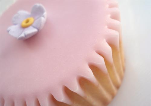 Fairy cakes_8913_12