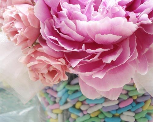 Bm_flowers_5