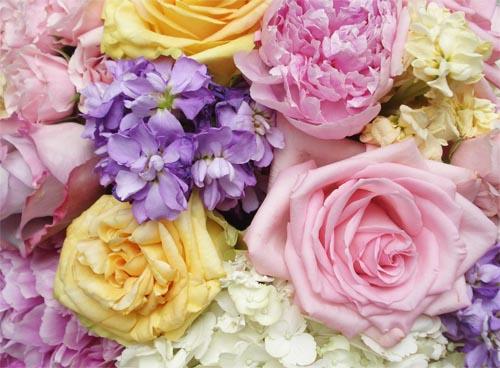 Bm_flowers_2