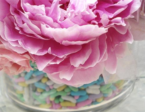 Bm_flowers_6
