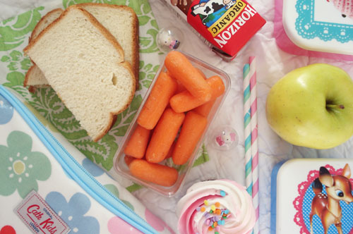 Packed lunch_14