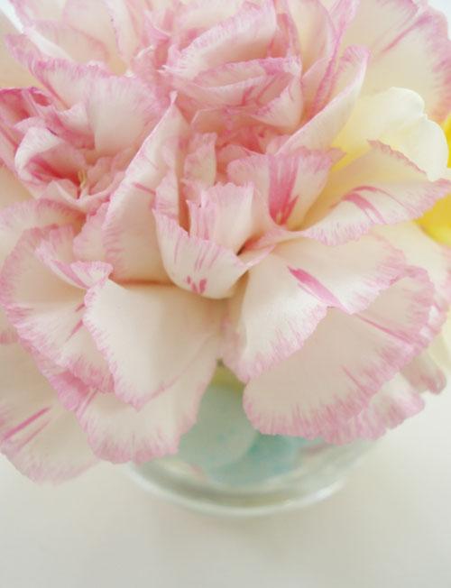 Easter flowers_7