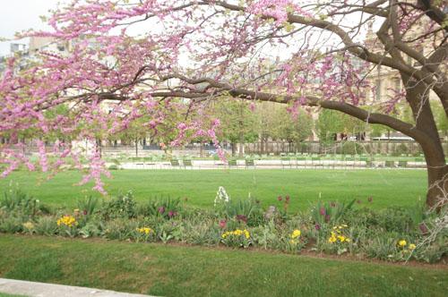 Paris gardens_spring_2012
