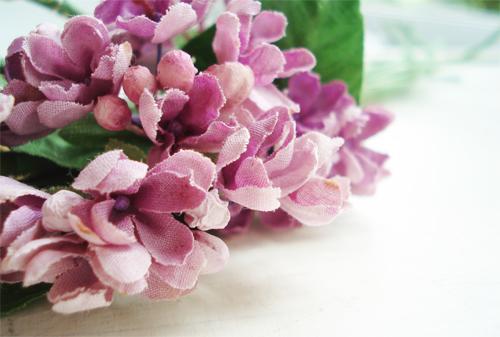 Lilacs_blog giveaway_1