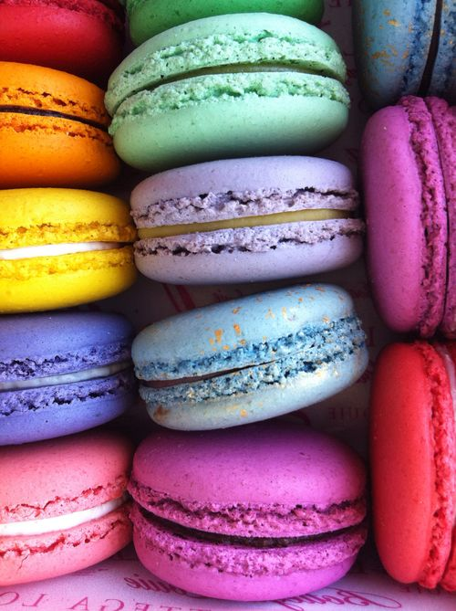 Macarons_louie bottega_2