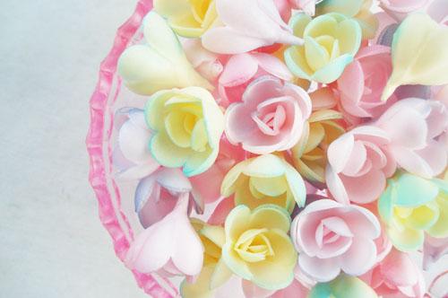 Wafer roses_2
