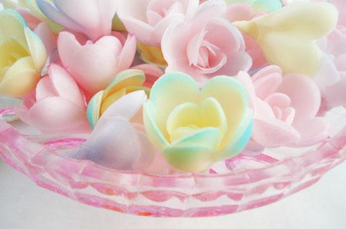 Wafer roses_5