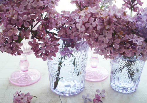 Lilacs_3