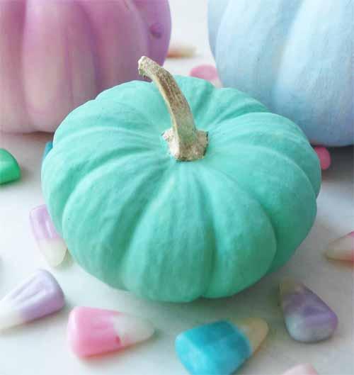 Pastel pumpkins_8