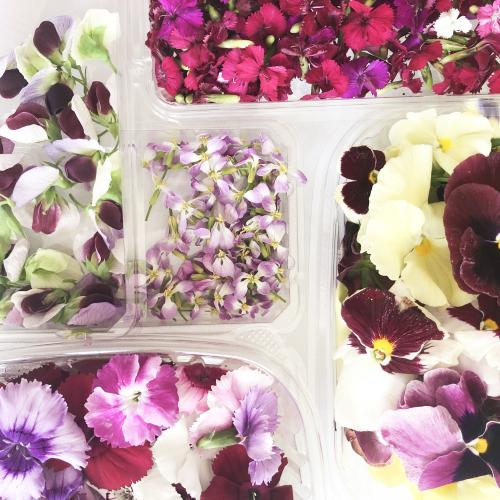 Flowers cake_blog_1